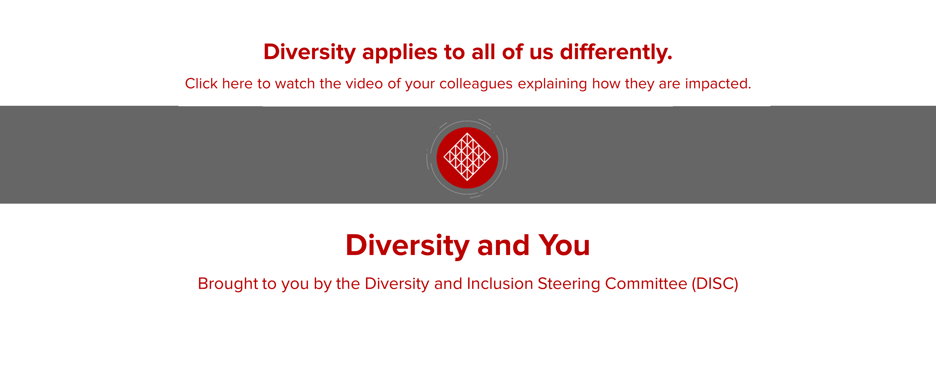 click here to watch diversity video