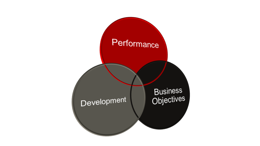 three overlapping circles with performance, development and business objectives written in the circles